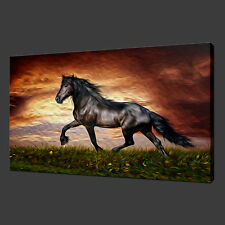 BLACK HORSE SUNSET CANVAS WALL ART PICTURES PRINTS 30 X 20 Inch WALL ART