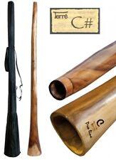 Didgeridoo aus Eukalyptus Tonhöhe: CIS ca. 165-175 cm professionell Percussion
