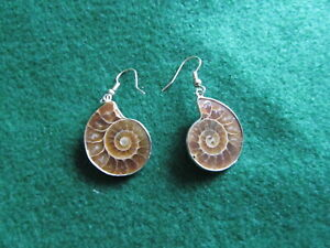 Prehistoric Ammonite Shell Earrings to complement Korite style jewelry