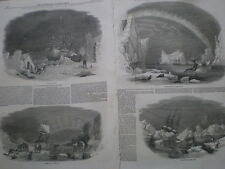 Pictures of the polar regions Arctic 1849 old prints my ref T