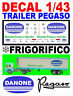 DECAL 1/43 TRAILER PEGASO FRIGORIFICO DANONE (02)