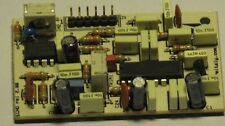 RM Italy Echo Repeater Board