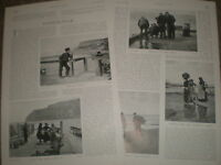 Photo article on fishermen fisher-folk 1903 ref U
