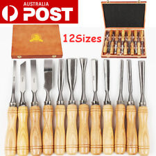 12x Wood Carving Chisels Hand Carver Woodworking Tools Kit Alloy Steel Blade AU