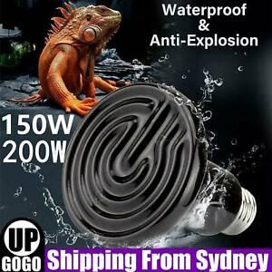 150W 200W Infrared Ceramic Heat Emitter Reptile Heat Lamp Bulb for Lizard Snake
