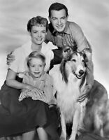 8x10 Print June Lockhart Lassie 1955 #2736