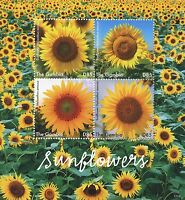 Gambia 2017 MNH Sunflowers Sun Flowers 4v M/S Flower Flora Stamps
