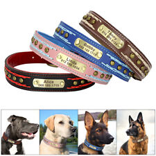 Heavy Duty Custom Dog Collar Leather Personalized Gold Name Plate Medium Large