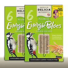 DELICIA 2 x 6 Stück Inno Ganzjahres Garten Vogelfutter | EnergieBloc