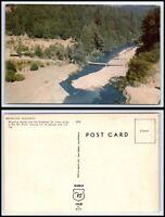 CALIFORNIA Postcard - Eel River Along The Redwood Highway M26