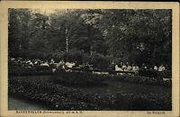 Badenweiler Schwarzwald alte Ansichtskarte ~1930 Partie im Kurpark Personen