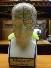 "Phrenology Head Porcelain Fowler L N Scientific Psychology Bust 12"" Tall"