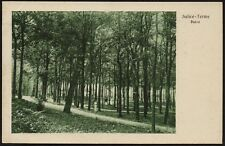 AX0320 Salice Terme (PV) - Il parco - Cartolina postale - Postcard