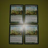 Primordial Sage x4 Ravnica: City of Guilds 4x Playset Magic the Gathering MTG