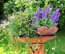 COUPE EN MÉTAL PATINE bxt.40 BOL Bac à plantes décoration de jardin à fleurs