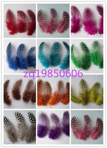 Wholesale 20-100 pcs beautiful guinea fowl feathers 7.5-10 cm /3-4 inch