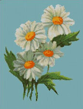 "Daisies Daisy Flower Counted Cross Stitch Kit 13"" x 10"""