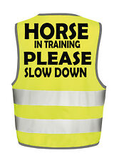 HORSE IN TRAINING HI VIZ VIS VEST EQUESTRIAN SAFETY TABBARD WAISTCOAT VISABILITY