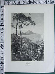 C1875 Antik Aufdruck ~ Blick Von Capri