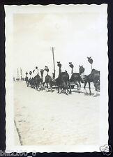 49. Saumur . régiment . militaires . photo originale de 1936