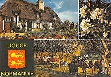 BT8942 La Douce Normandie         France