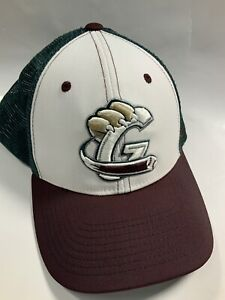Gary SouthShore RailCats Minor League Baseball SnapBack Hat Cap