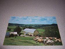 1960s TWIN MAPLE FARM WALDEN VERMONT VTG POSTCARD