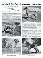 BORDER TERRIER DOG WORLD 1963 BREED KENNEL ADVERT PRINT PAGE  WHARFHOLM KENNELS