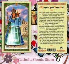 Our Lady of Consolation- Prayer in Special Time of Need - Laminated  Holy Card