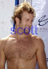 SCOTT CAAN #3,BARECHESTED,SHIRTLESS,hairy chest,8x10 PHOTO,HAWAII FIVE-O