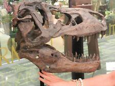 Tyrannosaurus Skull Pre Historic Dinosaur Bone Big Sculpture Head Trex Large New