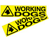 WORKING DOGS VEHICLE SIGNS, MULTI OPTIONS / STICKERS / MAGNETS / SIZES