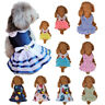 Cute Dog Cat Bow Tutu Dress Lace Skirt Pet Puppy Dog Costume Apparel Clothes