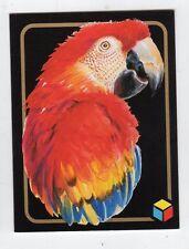 figurina card - AMICI DEL CUORE  - numero 115 ARA MACAO