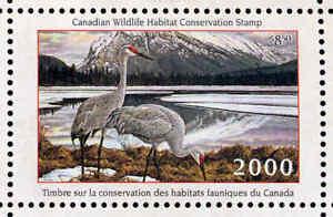 Canada 2000 Canard Tampon Mint En Dossier Comme Publié Sable Colline Grue de Ken