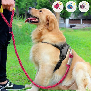 5ft Braided Cotton Rope Dog Leash for Medium Large Dogs Soft Handle Walking Lead