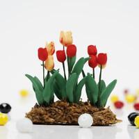 Puppenhaus Miniatur 1/12 Garten Eine Reihe Von Blume Tulpe Laenge E0J0