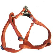 New listing No pull Dog harness small