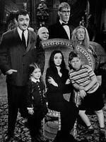 The Addams Family Cast John Astin Carolyn Jones Ted Cassidy    8x10 Glossy Photo