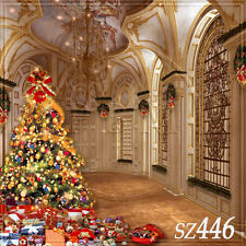 Christmas 10'x10' Computer-painted Scenic Photo Background Backdrop SZ446B881