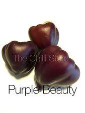 Purple Beauty Hot Chilli Seeds x 10