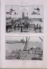 1903 Imprimé Chameaux pour Somaliland Quat à Karachi