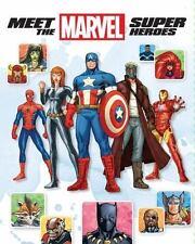 Meet the Marvel Super Heroes by Chris Wyatt (2015, Hardcover)