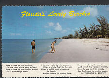 America Postcard - Florida's Lovely Beaches By Theodore.R.Rowley  RR1668