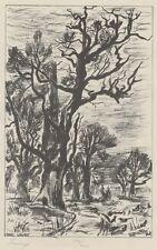 """""""PAYSAGE D'ARBRES"""" Gravure sur bois numérotée 192/450 de Marc LAURY"""