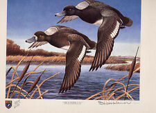 ILLINOIS #9 1983 STATE DUCK STAMP PRINT LESSER SCAUP by Bartlett Kassabaum