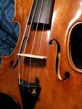 Guanieri style 4/4 Advanced Violin lightly aged beautiful Spruce & Maple grain!