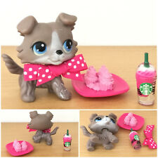 Littlest Pet Shop AUTHENTIC GREY GRAY COLLIE DOG #67 STARBUCKS BOW CAKE