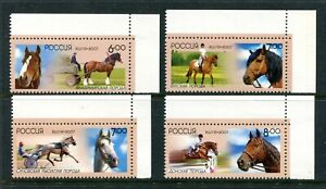 Russia 7051-7054, MNH, 2007 Horses Domestic Animals Sport. x34045