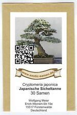 Bonsai - Japanische Sicheltanne - Cryptomeria japonica (30 Samen)